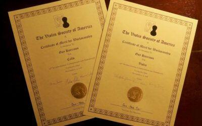 VSA awards!