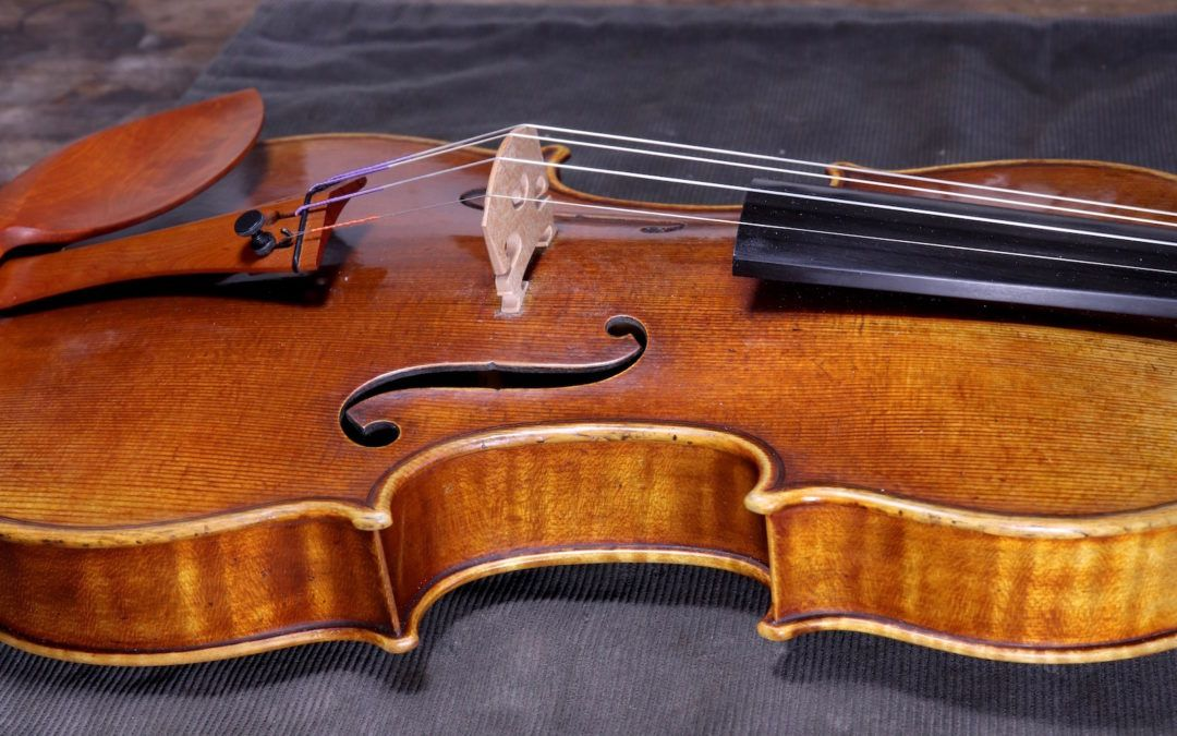 Violin available –  from 2009